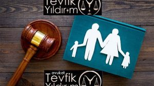 CMK Mahkemece Atanan Ceza Avukatı Nedir ?